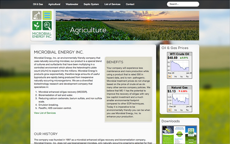 Albuquerque Web Design Client - Microbial Energy Inc.